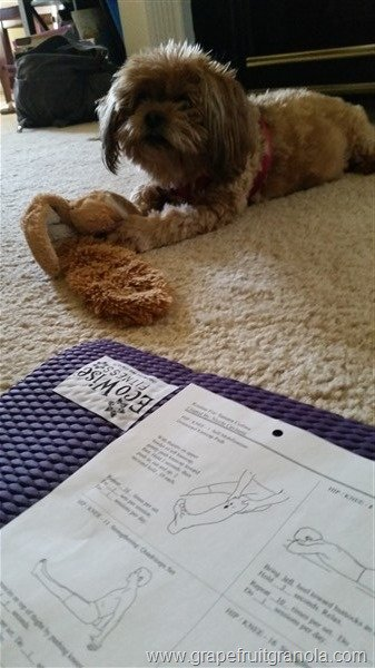 Lily Supervising PT Exercises